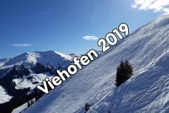 2019 Viehhofen